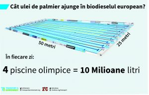 Where palm oil goes_pooll_ro
